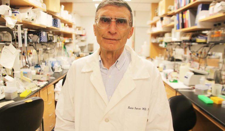 Kanser Tedavisi Artık Mümkün Olabilir diyen Aziz Sancar Tedavinin Fareler Üzerinde Olumlu Sonuç Verdiğini Söyledi