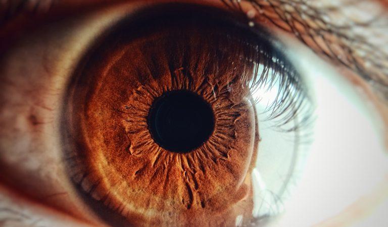 Göz Mikrobiyomu ile Tanışın