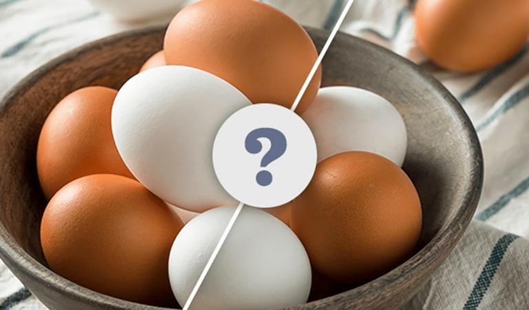 Neden Hem Beyaz Hem de Kahverengi Yumurta Var? Hangi Renk Yumurta Almalı?
