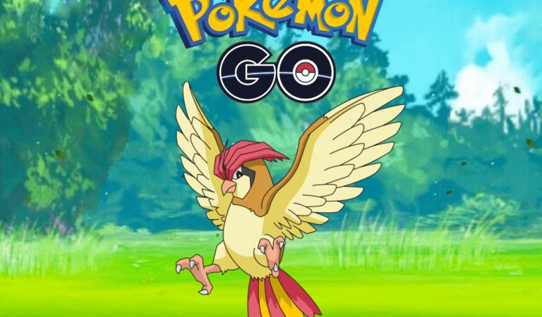 Pokemon Go Pidgeotto Rehberi
