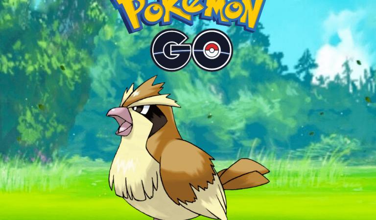 Pokemon Go Pidgey Rehberi
